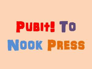 PUBIT! to NOOK PRESS